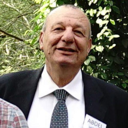 Abdelfattah Metawie